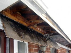 clogged gutter water damage