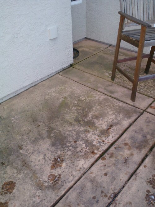 Concrete patio cleaning roseville for What to clean concrete with